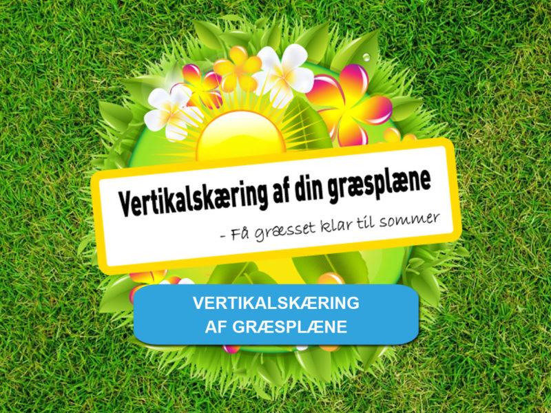 vertikalskæring af græsplæne - få et tilbud nu hos Vojens Trailerudlejning